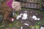 herbststala2004012.jpg